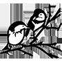 Vogelvereniging P.J. Helder
